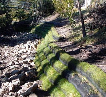 Bank Stabilisation, Bank Erosion Control, Natural Bank Stabilisation, River bank Stabilisation