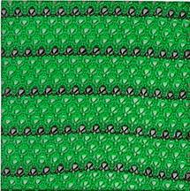 Silt Socks, Compost Socks, Filter Socks, Filter Soxx, Gold Coast